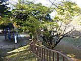20171210horikawaeki03
